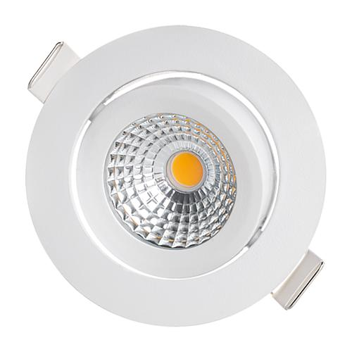 LED downlight spotlight Standard 1