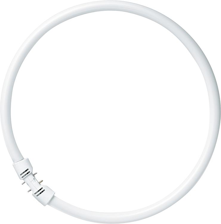Ring Pipe Lumilux T5 Fc Base 2gx13 40w840 Cool White